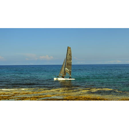 Canvas Print Catamaran Sea Sailboat Leisure Sport Sailing Stretched Canvas 10 x