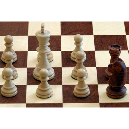 Laminated Poster Chess Farmers Black White Pieces King 24x16 Adhesive Decal