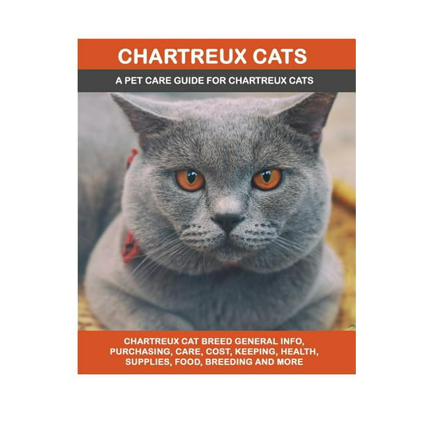 Chartreux Cats Chartreux Cat Breed General Info Purchasing Care Cost Keeping Health Supplies Food Breeding And More Included A Pet Care Guide For Chartreux Cats Walmart Com Walmart Com