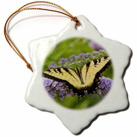 3dRose Eastern Tiger Swallowtail on Butterfly Bush, Marion, Illinois, USA. - Snowflake Ornament, 3-inch