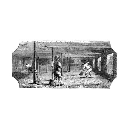 Steeping, Couching and Flooring Malt, 1886 Print Wall