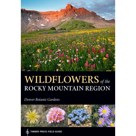 Wildflowers of the Rocky Mountain Region - Paperback Bierstadt The Rocky Mountains