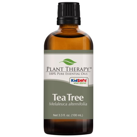 Plant Therapy Tea Tree Essential Oil | 100% Pure, Undiluted, Natural Aromatherapy, Therapeutic Grade | 100 mL (3.3 (Tea Tree Oil Mole Removal Before And After)