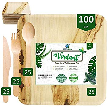 Disposable 100/% Natural Areca Palm leaf Plates Set For All Occasions