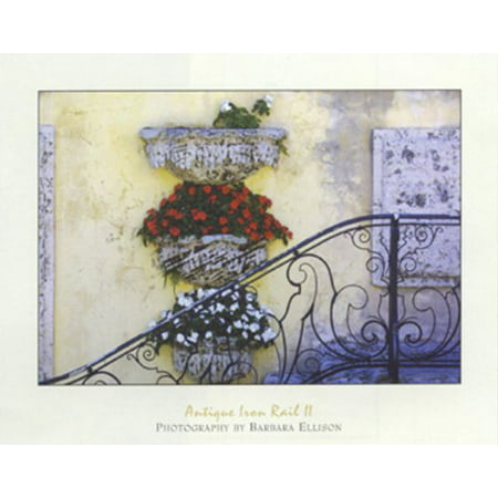 Antique Iron Rail II by Barbara Ellison 16x20 PosterSTAIRWAY FRONT ENTRANCE FLOWER BOxES HAND RAIL VINTAGE FLORAL STEPS ()