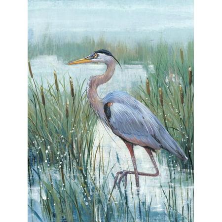 Marsh Heron II Bird Animal Art Print Wall Art By Tim O'toole