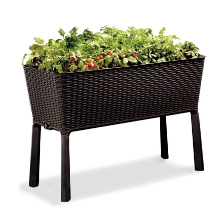 Keter Resin Elevated Garden, All Weather, Self-Watering Plastic Planter, Brown Rattan ()