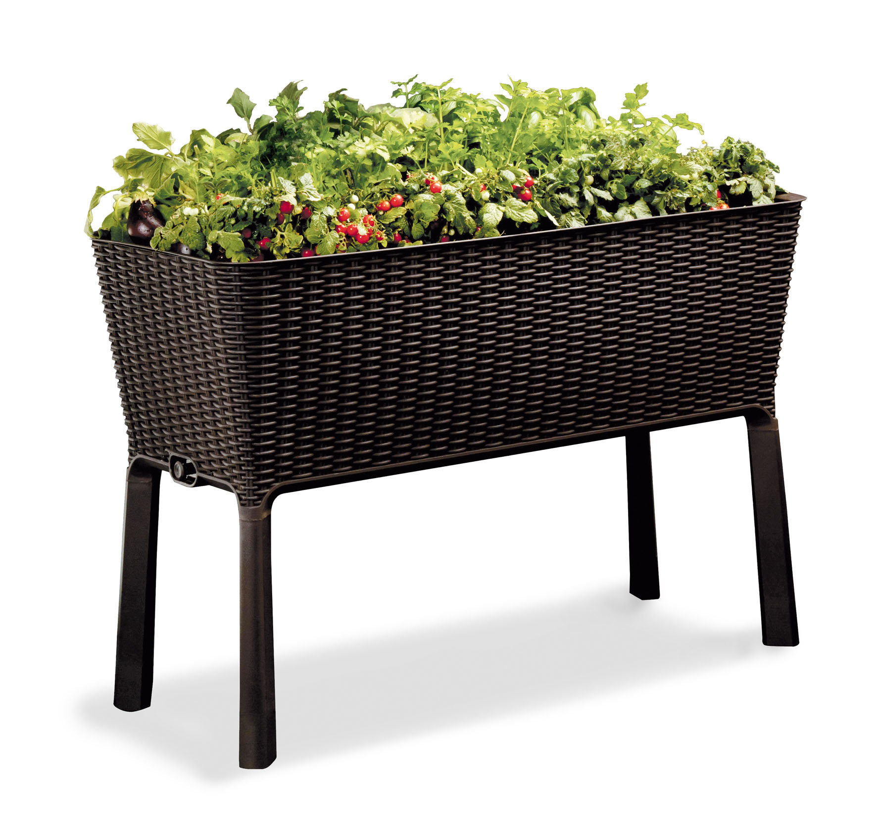 Keter Easy Grow Resin Elevated Garden, All Weather, Self-Watering Plastic Planter, Brown Rattan