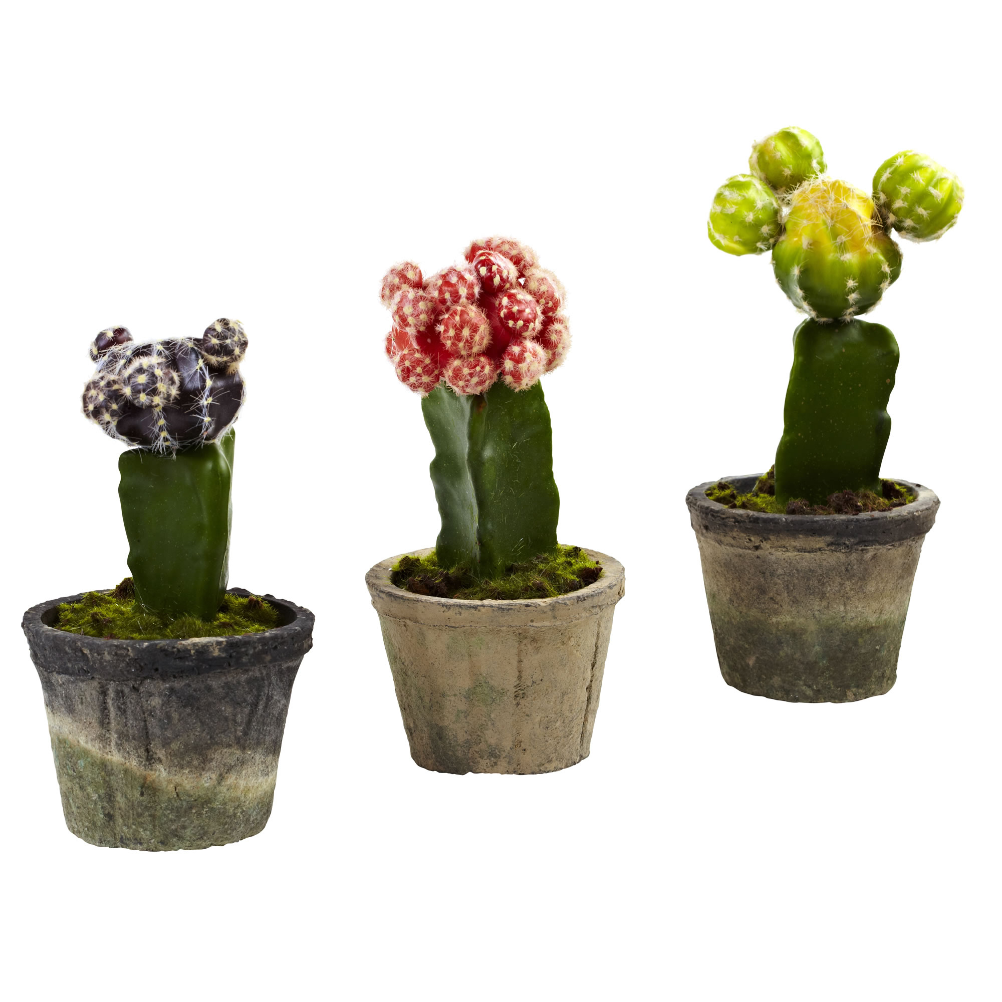 Nearly Natural Colorful Cactus (Set of 3)