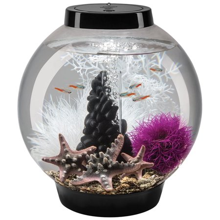 black baby biorb aquarium set with decorations