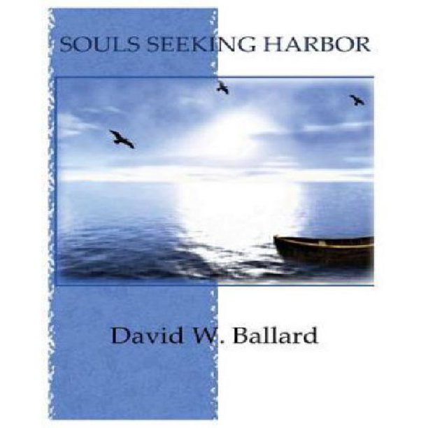 Souls Seeking Harbor (Paperback)