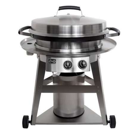 evo outdoor grills 40 39 39 professional 2 burner gas grill