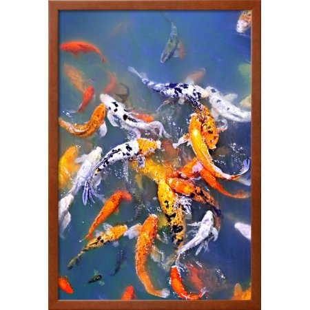 Koi Fish in Pond Framed Print Wall Art By elenathewise - Walmart.com