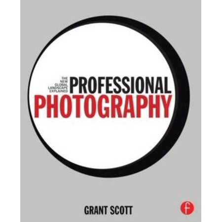 Professional Photography  The New Global Landscape Explained