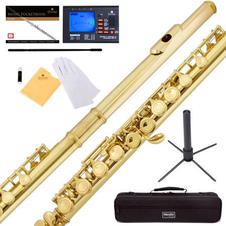 Mendini By Cecilio Mfe L Gold Color C Flute With Stand  Tuner  1 Year Warranty  Case  Cleaning Rod  Cloth  Joint Grease  And Gloves
