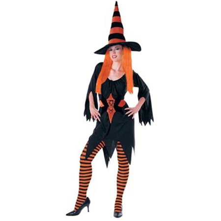 Adult Hagatha The Witch Costume Rubies 15876
