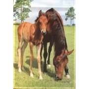 "Mare & Foal Summer Garden Flag Everyday Colt Country Farm Horse 12.5"" x 18"""