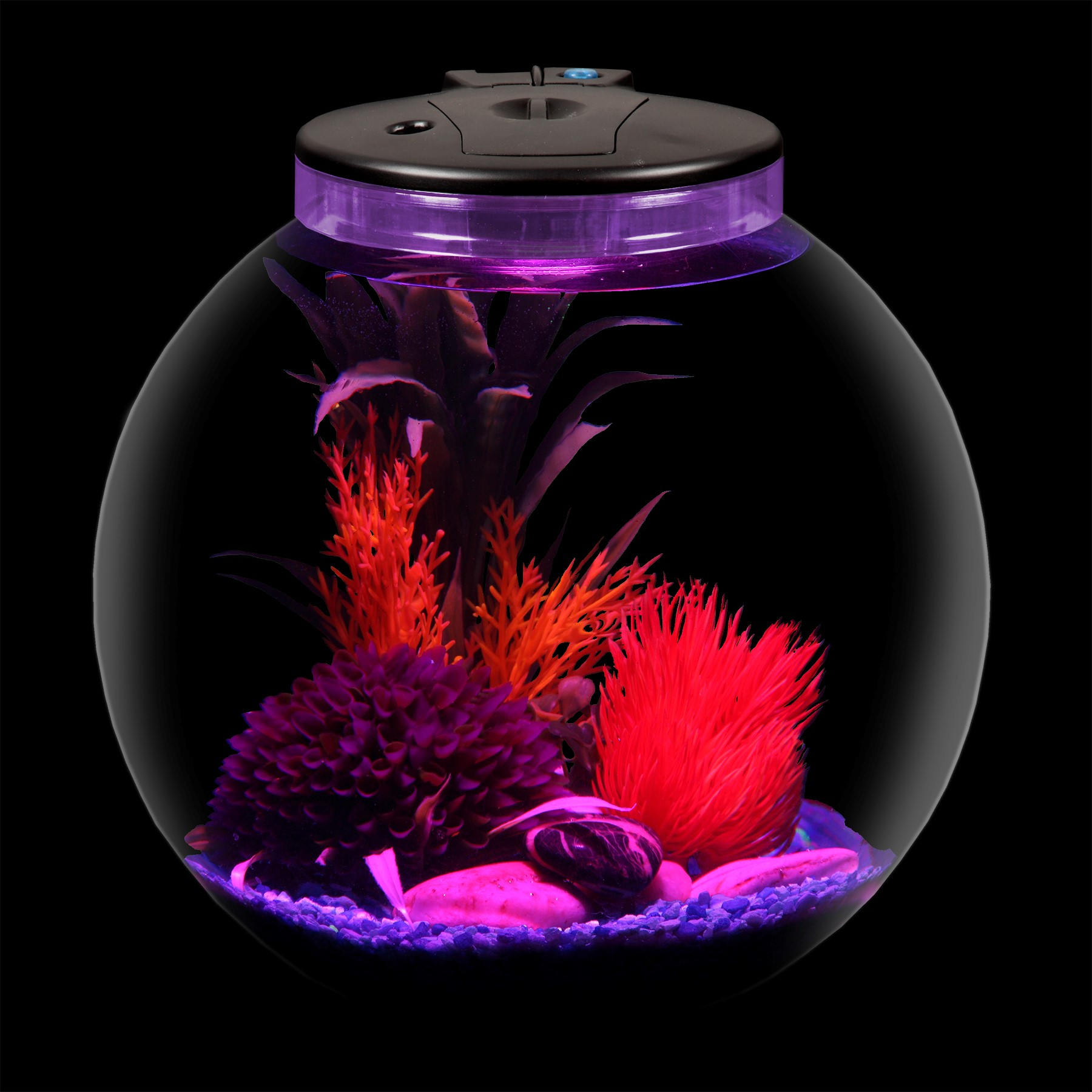 Hawkeye 3-Gallon Bubble Tank with Power Filter and LED Lighting ...