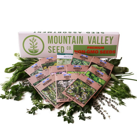 Culinary Herb Garden Seeds Collection - Deluxe Assortment - 12 Non-GMO Seed Packets: Basil, Dill, Oregano, Mustard, Cilantro, Sage, Rosemary, Thyme, Arugula, More