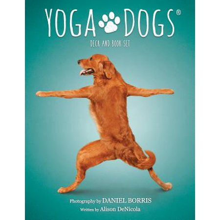 Dog As Yoda (Yoga Dogs Deck & Book Set)