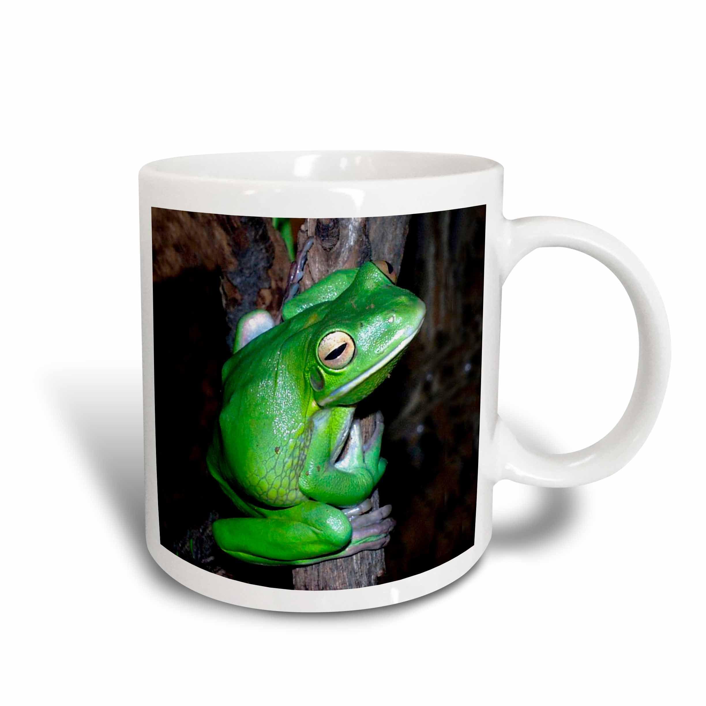 3drose Tree Frog Ceramic Mug 11 Ounce Walmart Com