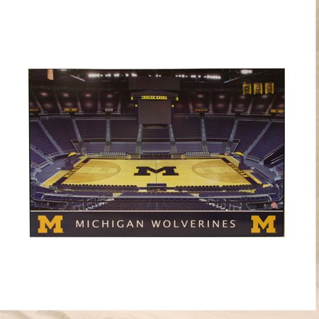 NCAA Michigan Wolverines 30x20 Basketball Arena Wooden Plaque Wall Art