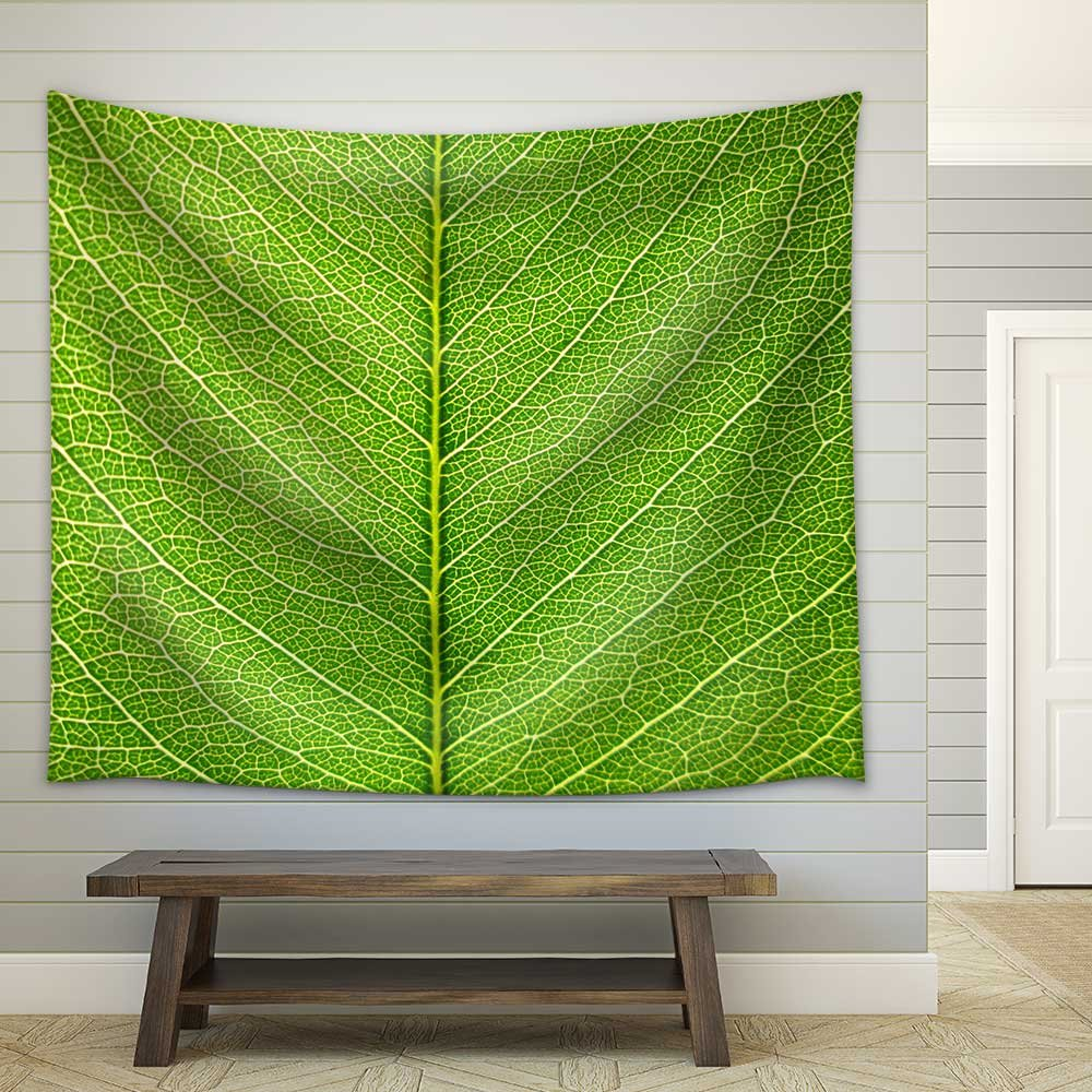 wall26 - Leaf of a Plant Close Up - Fabric Wall Tapestry Home Decor - 68x80 inches