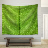 Product Image wall26 - Leaf of a Plant Close Up - Fabric Wall Tapestry Home  Decor - 68x80 0310d2a0d9bfe