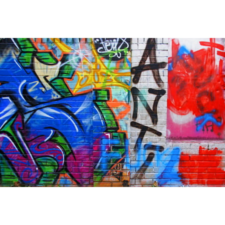 Laminated Poster Wall Painting Painting Spray Art Graffiti Hauswand Poster Print 24 X 36
