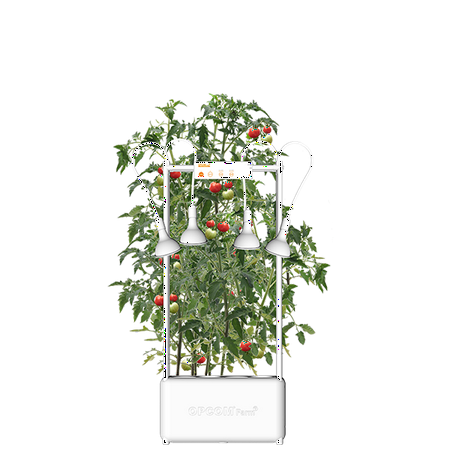 Opcom Farm Growtank Indoor Smart Hydroponic System