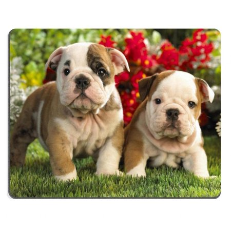 POPCreation Bulldog Puppies dogs pets garden Mouse pads Gaming Mouse Pad 9.84x7.87 inches