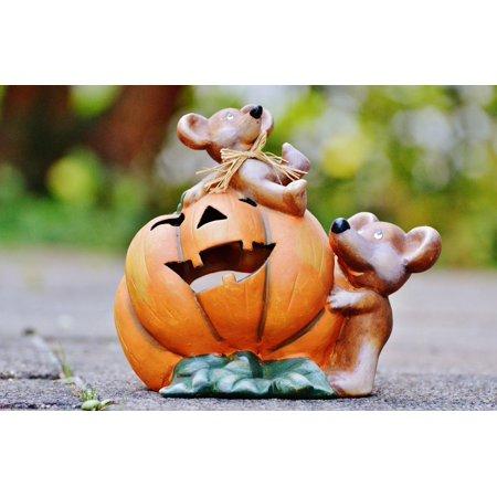 Framed Art For Your Wall Cute Pumpkin Funny Sweet Halloween Mice 10x13 - Cute Halloween Frame