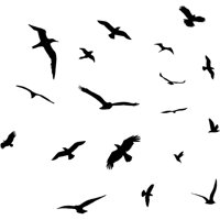 Flock of Birds Flying Wall Decals Stickers Peel and Stick Wall Art