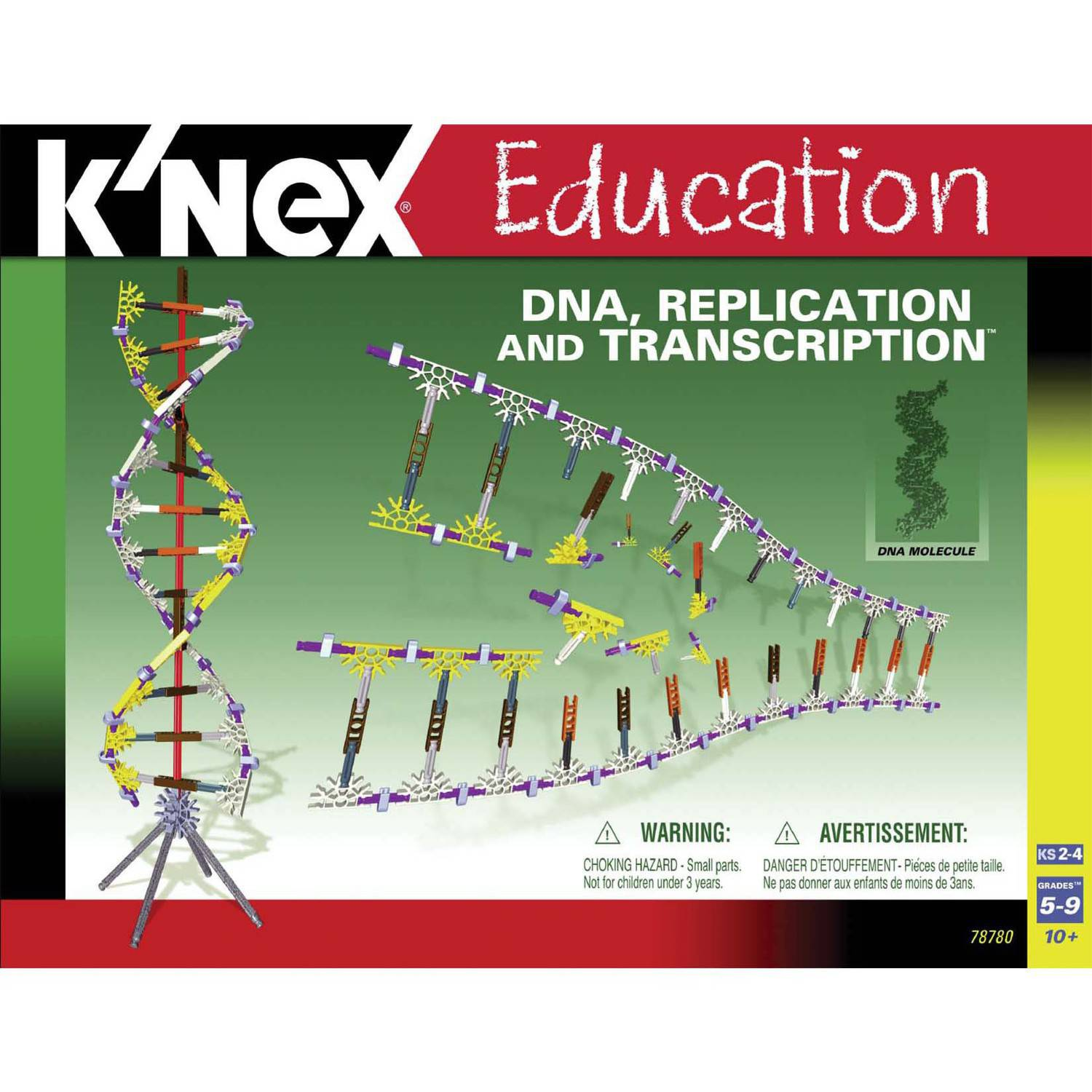 K'NEX Education: DNA, Replication and Transcription Building Set