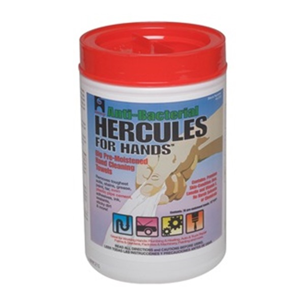 Hand Cleaning Wipes, 10W x 12In. L