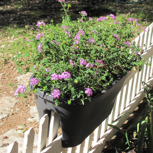 Exaco Oval Rail Planter