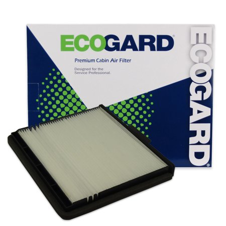 ECOGARD XC45384 Premium Cabin Air Filter Fits Ford F-150, F-250 Super Duty, Expedition, F-350 Super Duty / Lincoln Navigator / Ford F-350, F-150 Heritage, F-250, F Super Duty / Lincoln