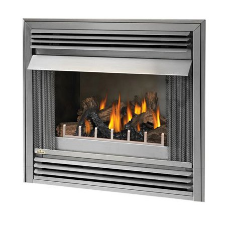 Napoleon 36 in. Outdoor Gas Fireplace Insert