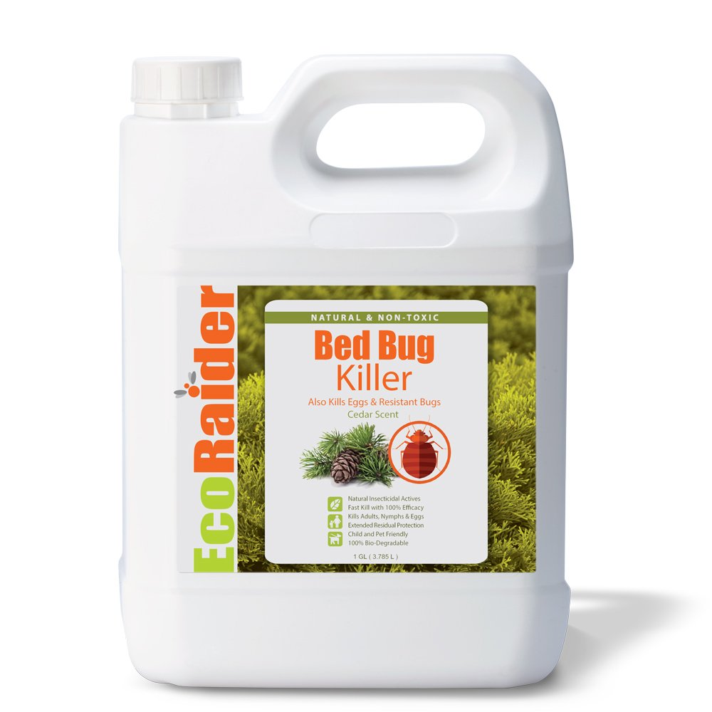 EcoRaider Bed Bug Killer, 1 Gallon