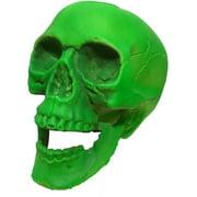"Green Skeleton Skull 6"" Prop Haunted House Halloween Decor Decoration"