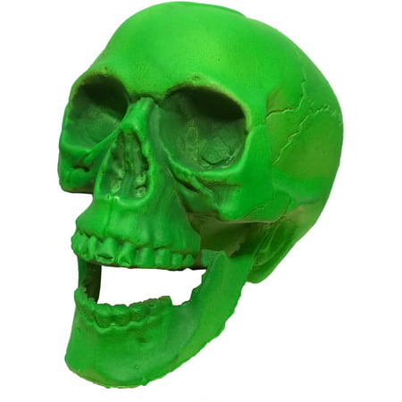 Haunted Halloween High School (Green Skeleton Skull 6