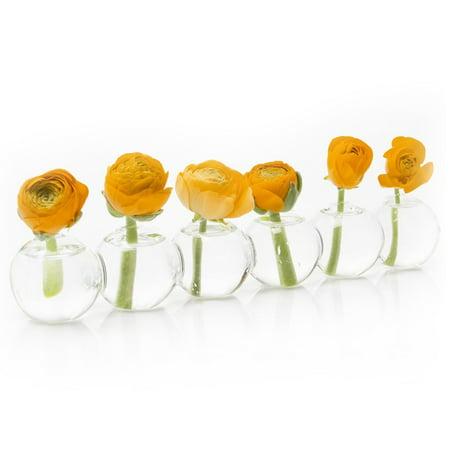 Chive Caterpillar Small Flowerbud Glass Vase Unique Shape
