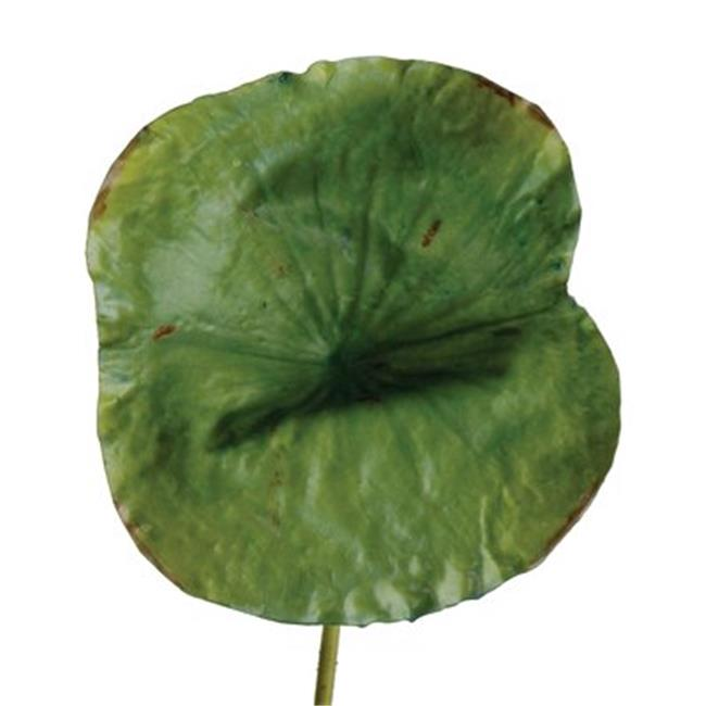 Distinctive Designs DG-658-GR DIY Foliage 28 in. L Artificial Large Green Lotus Leaf 24 per Case - Pack of 6