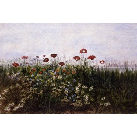 Flowers on the Irish Coast Fine Art Red Flower Painting Print Wall Art By Andrew Nicholl ()