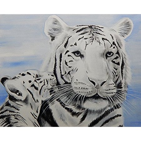 Tiger Cub Love by Ed Capeau 16x12 Art Print Poster   Garden Wildlife Tigers Cute Baby Animals White Tigers POD