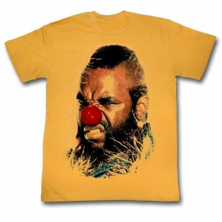 Why Costumes On Halloween (Mr. T Icons Why Must I Adult Short Sleeve T)