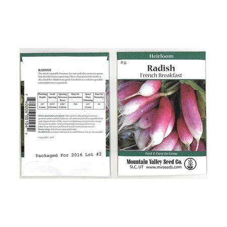 French Breakfast Radish Seeds - 8 Gram Seed Packet - Heirloom Garden Seeds, Non-GMO - Vegetable Gardening and Micro Greens, Radish Seeds .., By Mountain Valley Seed Company Ship from (French Garden Breakfast Cup)