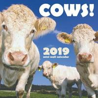 Cows! 2019 Mini Wall Calendar (Paperback)