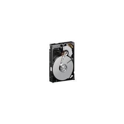 Western Digital Blue 80 GB Desktop Hard Drive: 3.5 Inch, ...