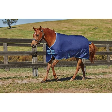 Saxon 600D Standard Neck Medium Turnout Blanket (Navy/Light Blue, (Saxon 600d Turnout Sheet)